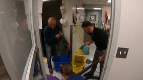 Society Hill veterinarian office deals with flooding after water main break