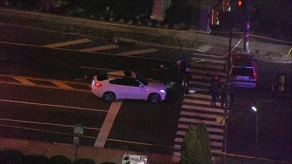 Police identify elderly woman killed in Somerton hit-and-run