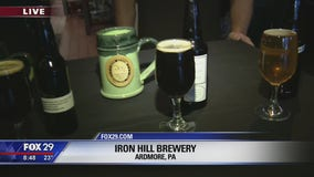 Iron Hill Brewery hosts regional beer competition for homebrewers