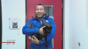 Cats, dogs seek furever homes at Brandywine Valley SPCA