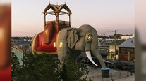 Lucy the Elephant listing on Airbnb offers limited-time historic stay