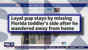 Click This: Family dog protects boy, 3, lost in Florida woods until police arrived