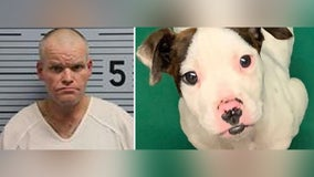 Man allegedly hanged puppy in tree because he didn't have gun