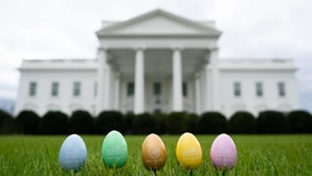 White House Easter Egg Roll canceled amid coronavirus concerns