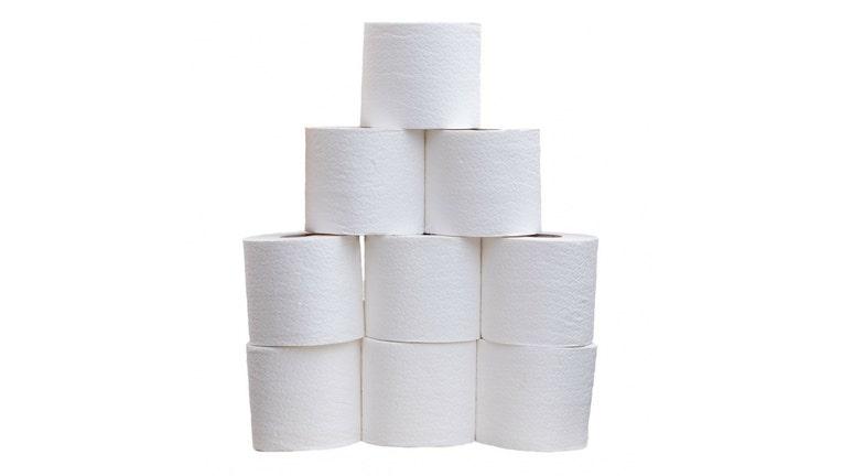 Toilet Paper Rolls_1506045690895-401720.jpg