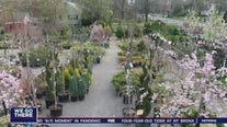 New Jersey garden centers buzz with activity despite coronavirus concerns