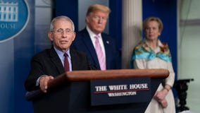 Fauci says world may never return back to normal after coronavirus outbreak