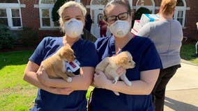 Providence Animal Center donates PPE and offers puppy love to local nursing home