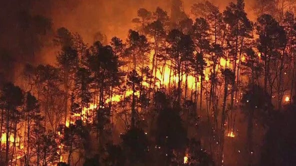 Crews continue battling large forest fire in Cumberland County