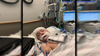 Bucks County mom warns parents after daughter hospitalized with mysterious illness