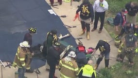 Horse rescued from covered pool in Chester County
