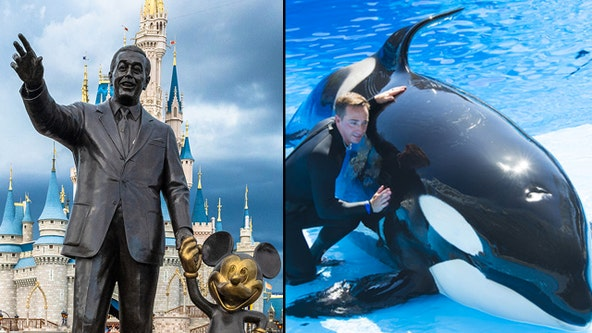 Disney World, SeaWorld Orlando reopening plans approved by Orange County Task Force