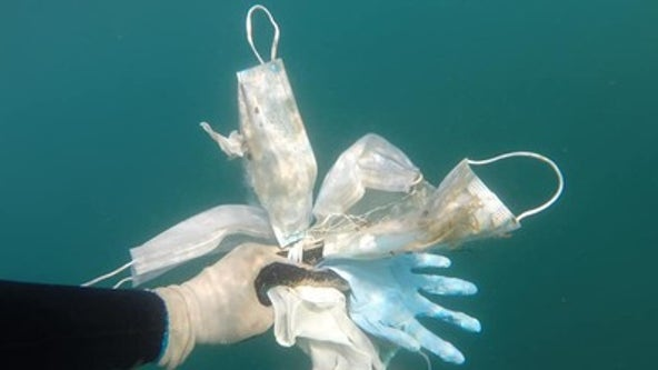 PPE pollution: Video shows divers removing masks and gloves from ocean