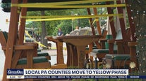Local restaurants, businesses prepare for move to yellow phase