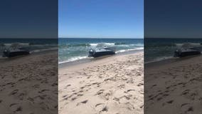 Breaching whale capsizes boat in NJ, throwing 2 people into Atlantic Ocean