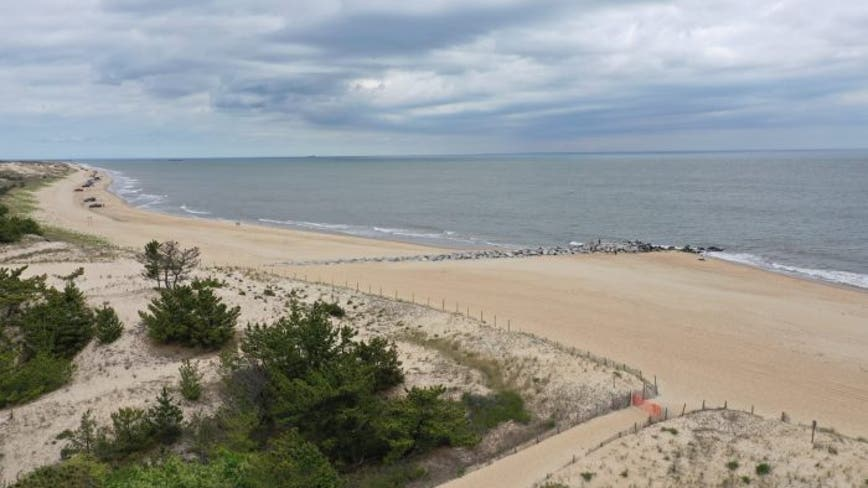 Delaware beach closed to surfing, swimming after possible shark bite