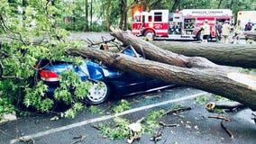 Storms wreak havoc across the Delaware Valley Monday