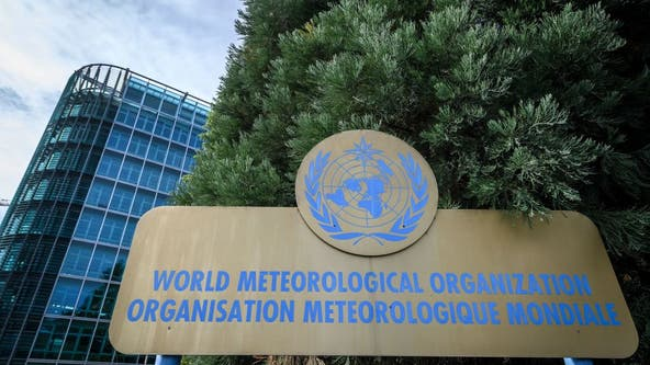 Earth's average temperature to rise each year for next 5 years, World Meteorological Organization says