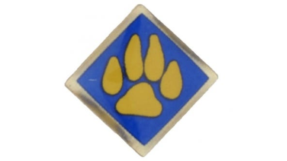 Boy Scouts of America cub scout activity pins recalled due to excessive lead levels
