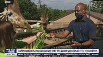 Elmwood Park Zoo offers Breakfast with Giraffes and other events