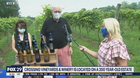 How Crossing Vineyards is operating during the pandemic