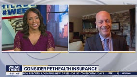 Cashing In: Interest in getting a dog has increased during pandemic