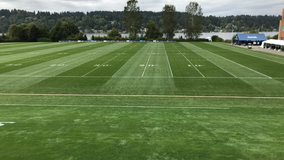 'This is a humanity issue': Seahawks cancel training camp practice, Carroll calls for social justice