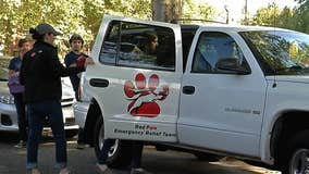 Red Paw Emergency Relief Team to cease their operation in October