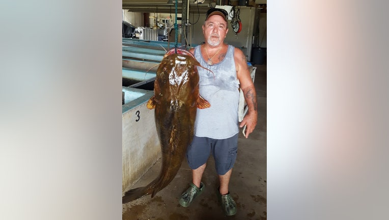 record-catfish.jpg