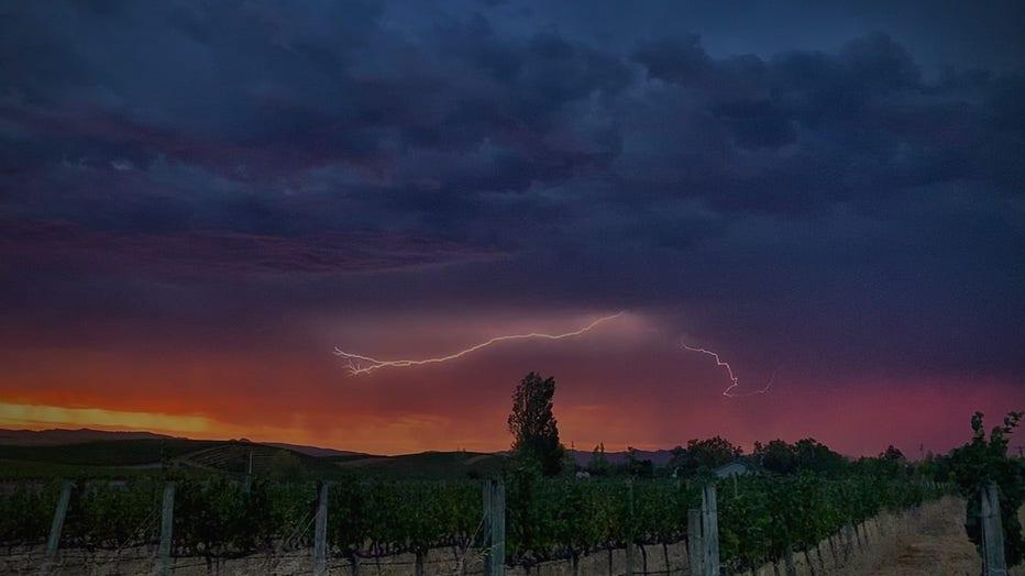 lightning-4.jpg