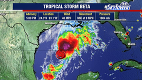 Big day in the tropics: Tropical storms Wilfred, Alpha, and Beta form just hours apart