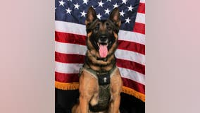 Gwinnett K-9 officer killed in the line of duty to be laid to rest