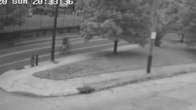 New surveillance video released in deadly hit-and-run