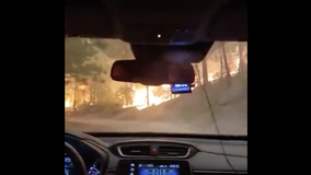 Harrowing video shows woman escaping California wildfire in Sierra National Forest
