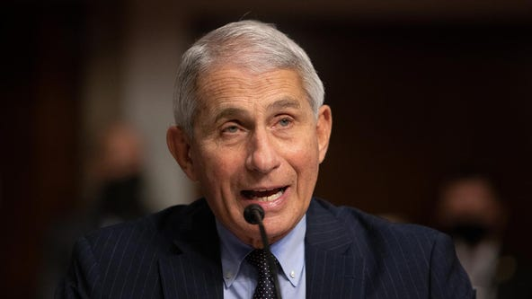 Fauci estimates COVID-19 vaccine won't be available until January 2021 or later
