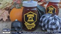 Philadelphia Bee Company is selling lanternfly honey