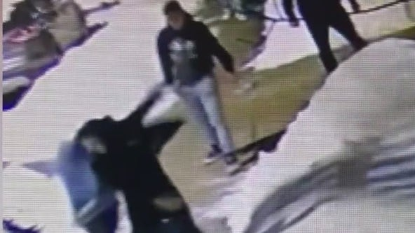 Video shows group of men attacking pizzeria owner in Norristown