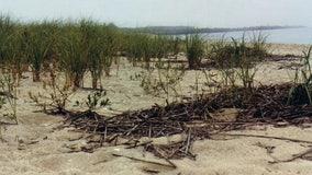 NJ will fix steep beach entrance drop-offs by summer