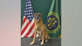 Arizona Border Patrol K-9 Officer retires after 7 years of service