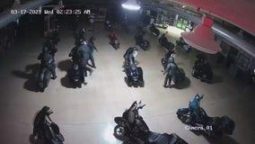 Burglars ride motorcycles out front door of Harley-Davidson dealership in Indiana