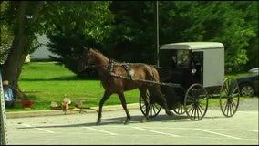 Amish community in Lancaster County reaches herd immunity from COVID-19, medical center says