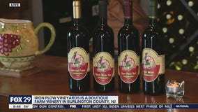 Jenn stops by boutique farm winery Iron Plow Vineyards