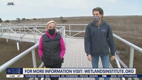 Wetlands Institute offers day trips for families