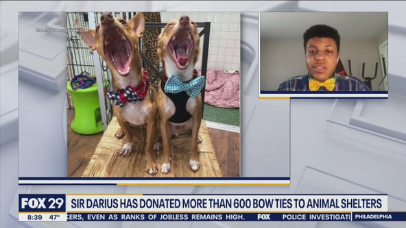 NJ teenager on mission to help pets get adopted