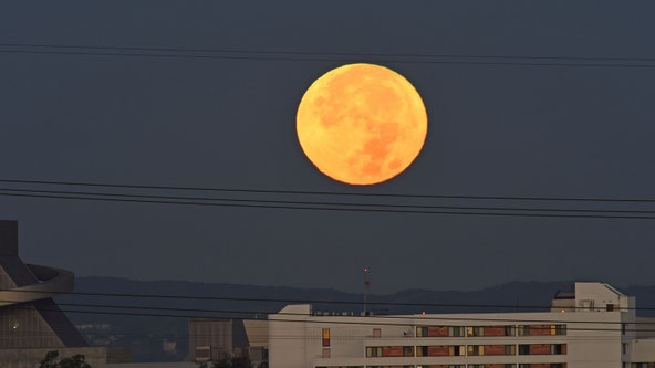 Supermoon Pink Moon to appear big and bright in the evening sky in April — here's how to watch