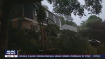 Woman rescued after tree crashes into home in Newark, Delaware