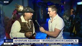 Adventure Aquarium opens pirate themed exhibit