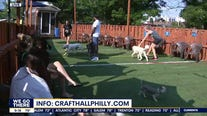 Bark and Beer Garden in Fishtown offers summer fun for you and your furry friend