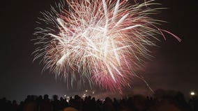 Ruff night: Fourth of July fireworks can cause stress, anxiety in dogs