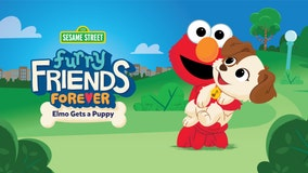 Elmo adopts a new puppy on 'Sesame Street'